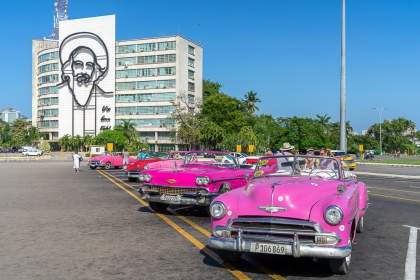 Pink Cars Parked